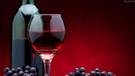 Keyfi alkol yasağına Danıştay'dan iptal
