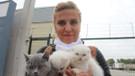 Gümrükten ihale ile satılan kedileri HAYTAP aldı