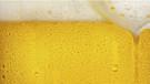 Slovenya'da bira çeşmesi yapılıyor!