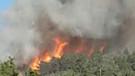 Denizli'de orman yangını!
