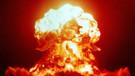 Çok az kişinin bildiği ilginç bilgiler! Nükleer savaştan sağ çıkabilecek tek canlı hangisi?