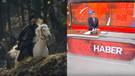 13 Mart 2019 Reyting sonuçları: Diriliş Ertuğrul, Sen Anlat Karadeniz, Fatih Portakal lider kim?