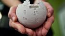 Sözcü yazarı Deniz Zeyrek: Wikipedia yeniden açılabilir