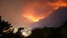 Muğla'daki orman yangının nedeni belli oldu!