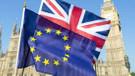 İngiliz hükümetinin anlaşmasız Brexit senaryosu ortaya çıktı