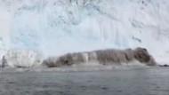 Buz dağı çöktü! Dev dalgalar böyle görüntülendi!