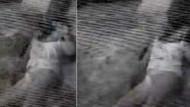 Aslı Baş'ın ölüm anı görüntüleri ortaya çıktı!