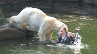iPhone'u sayesinde ayıya yem olmaktan kurtuldu!