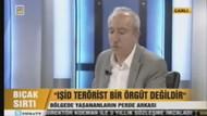 Orhan Miroğlu: PKK terörist örgüt değildir