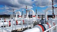 Türkiye'nin kaç günlük doğalgazı var?
