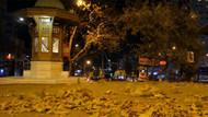 Lodos Bursa'da ağaçları devirdi