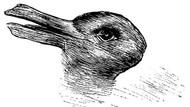Sosyal medya tartışıyor: Tavşan mı yoksa ördek mi?