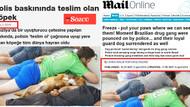 Teslim olan köpeğin sırrını Medyafaresi.com açıklıyor