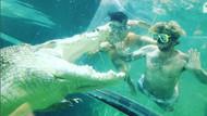 Avustralya'da timsah havuzu