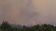 Eskişehir'de 50 hektar alan kül oldu!