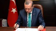 Cumhurbaşkanı Erdoğan'dan flaş erken seçim açıklaması