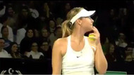 Türk taraftardan, Maria Sharapova'ya evlenme teklifi