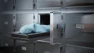 Otopsi için morga kaldırılan ceset domuz leşi çıktı