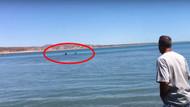 Kıyıya vuran dev köpekbalığının inanılmaz görüntüleri
