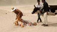 Burcu Esmersoy'u Hindistan'da inek yalayınca, neye uğradığını şaşırdı