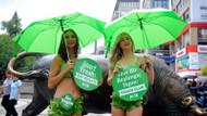 Takvim yakaladı: Kadıköy'de bikinili eylem yapan Marul kızlar Soros'çu çıktı