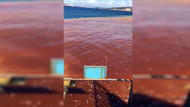 Yeni Foça'da tanklardaki sızıntı denizin rengini değiştirdi