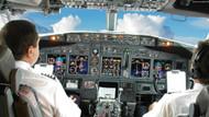 Pilot böyle uyardı: Siyah ve sarı renkli, bayağı büyük...