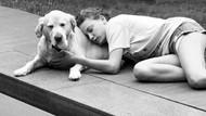 Ünlülerden ortak hayvanları koruma mesajı: Bu sessiz kullar...