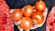 Soğanın fiyatı yüzde 100 arttı: Yılbaşına kadar 10 lirayı bulur