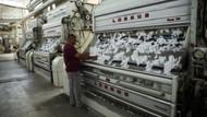 Enflasyonun üretici boyutu: Üretici fiyatlarının yüksek seyretmesi ne anlama geliyor?