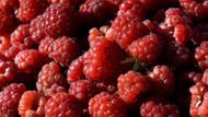 Kansere karşı en faydalı 9 mucize besin
