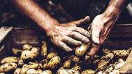 Türkiye Gıda Sürdürülebilirliği Endeksi'nde 67 ülke içinde 58. sırada