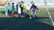 Futbol maçında sahaya giren köpek ortalığı karıştırdı