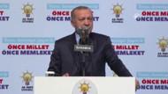 Erdoğan: İnlerinde bastık ve imha ettik, ediyoruz
