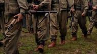 ABD'nin YPG'yi PKK'ya karşı savaştırabiliriz açıklamasının şifresi çözüldü