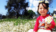 İkinci cemre suya düştü; Bodrum'da kırlar çiçeklendi