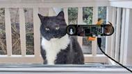 Kedisi için yüz tanıma teknolojisi geliştirdi