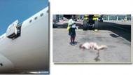 Uçaktan düşen hostesin feci ölümü