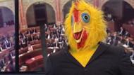 Macaristan'da bir siyasetçi; bedava bira vadetti, televizyona tavuk kostümüyle çıktı
