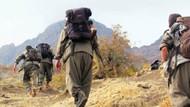 ABD Savunma Bakanı: PKK'nın Sincar bölgesinden çekildiğini görmek istiyoruz
