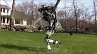 Boston Dynamics'ten kırlarda koşan yeni insansı robot