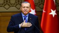 ANAR son anketini açıkladı! Erdoğan ilk turda...