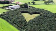 Eşi için 1000 ağaç dikti! İlginç detayı 17 yıl sonra pilot fark etti