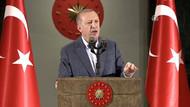 Erdoğan: Silahların namlularına karşı cesaretle yürüdük