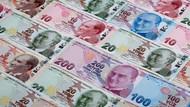 Lira karşısında değer kaybeden sadece bir para birimi var
