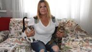Şikayet ettiği komşusu ile kedi maması karşılığında uzlaştı