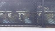 Tutuklanan kedicikler Bakırköy Cezaevi'ne getirildi