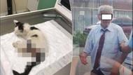 Kediye tecavüz davasında iğrenç savunma: Can güvenliğim yok
