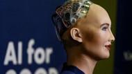 Parçaları kaybolan Sophia, başbakanla buluşamadı