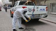 İstanbul'u sivrisinekler istila etti